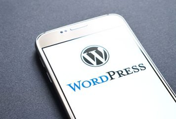 mobile phone displaying WordPress logo