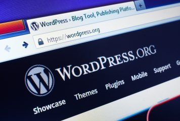 Person using wordpress multiple domains