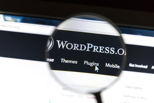 What is the Difference Between a WordPress Designer and Developer?
