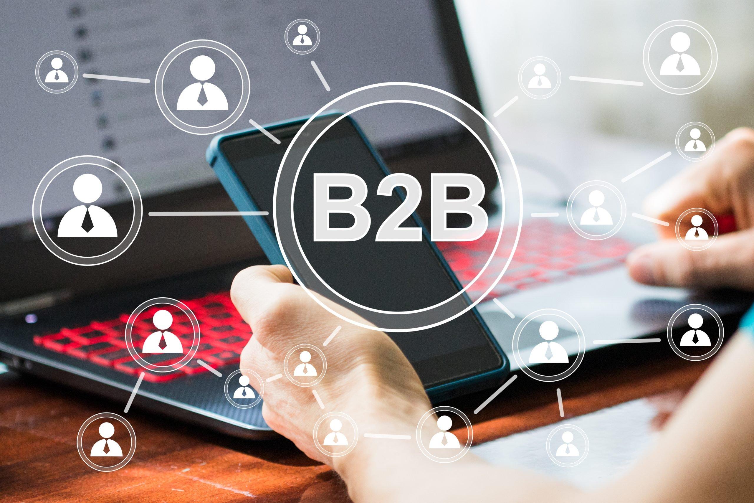 Choosing the Perfect B2B Ecommerce Solution